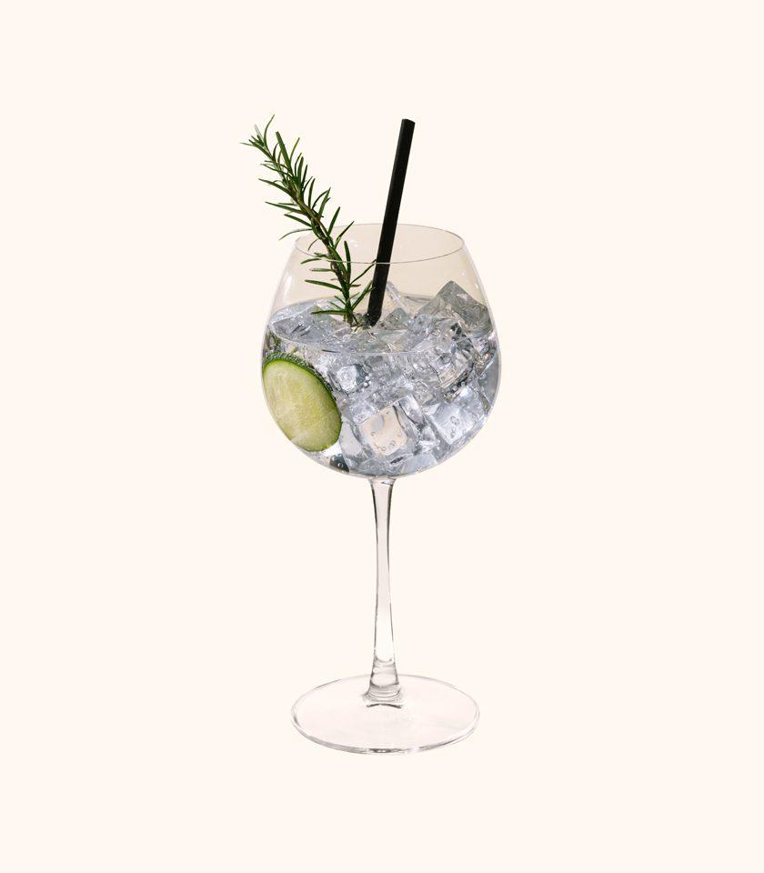 gin tonic box consegna a bologna e provincia